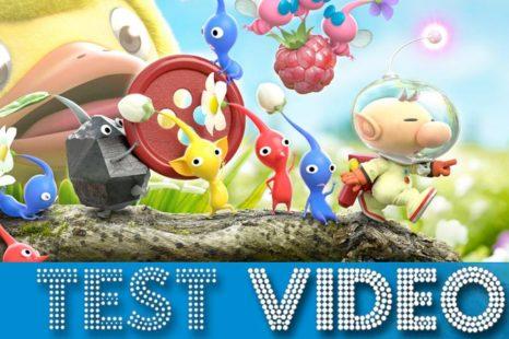 Hey! PIKMIN | Test Vidéo (3DS)