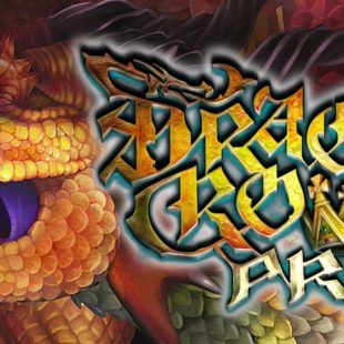 Dragon's Crown Pro sur PlayStation 4 en 2018
