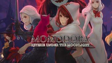 momodora reverie under the moonlight switch test